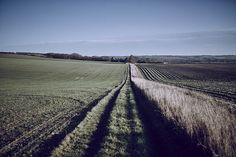 British Countryside in Autumn #Fieldsports #Countryside