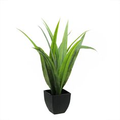 Artificial 21.5 inch Green Agave Succulent Plant in a Decorative Black Pot