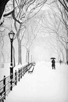 Snowy day in Central Park, New York USA