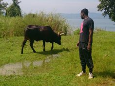 Back to my roots in Rwanda - Face to face with a bull. Loved exploring my ancestry and all its history