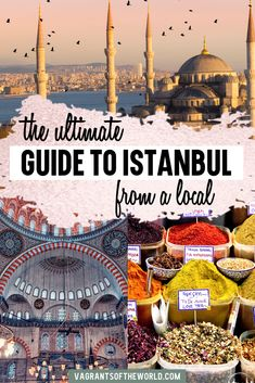 Take a local's guide to Istanbul tour and experience the best of Istanbul like a local. Discover more of this fascinating city beyond the guidebooks. Istanbul Guide, Istanbul Tours, Istanbul Travel, Istanbul Turkey, Visit Istanbul, Top Travel Destinations, Europe Travel Tips, Asia Travel, Places To Travel