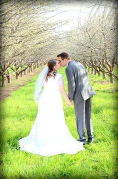 Orchard pictures. LDS wedding and modest wedding dress!