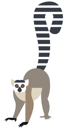 ZOO icons/illustration/infographics: Eleanor: Design and Illustration