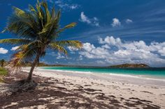 language studies abroad france in Martinique: Language courses ...