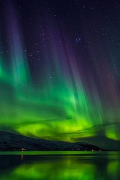 Aurora borealis - Norway | by Dionys Moser