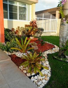 Great ideas in how to plant & incorporate bromelias to front yard Beautiful Low. Great ideas in how to plant & incorporate bromelias to front yard Beautiful Low Maintenance Front Front Yard Garden Design, Front Garden Landscape, Small Front Yard Landscaping, Landscaping With Rocks, Landscape Design, Patio Design, Landscape Architecture, House Design, Tropical Patio
