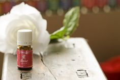 Rose essential oil removes emotional blocks and limitations to success.  Twenty-two pounds of rose petals are distilled for every 5-ml bottle of oil produced. www.youngliving.org/n1peace