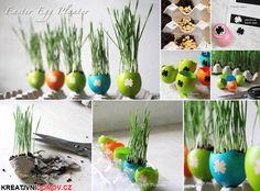 Rostoucí velikonoční vajíčka