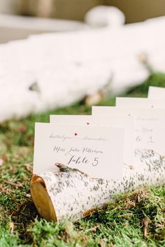 Birch logs and moss for your seating arrangement