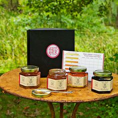 Red Bee Honey Party Tasting kit #WilliamsSonoma