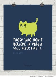 Motivational Cat Roald Dahl quote magic (more @ Kittycrew.com)