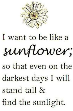 Postitive Quotes About Sunshine And Sunflowers