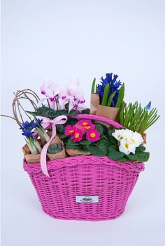 Bike basket and flower basket, two in one. This is what we call a Fabulous Baskets gift idea. Info & Orders: contact@fabulousbaskets.ro http://fabulousbaskets.ro/cosuri-bicicleta/cos-cu-maner-roz-si-aranjament-floral