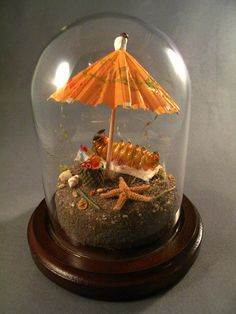 Caterpillar at the Beach, Insect Taxidermy by Lisa Wood