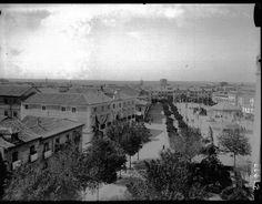 RUIZ VERNACCI TítuloALCALÁ DE HENARES (Madrid)- Vista del paseo Fecha de la tomaEntre 1910 y 1950
