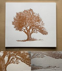 oak tree illustration - Pesquisa Google