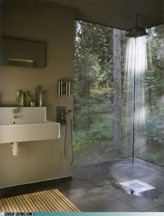 Amazing shower into the trees