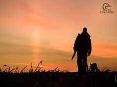 Morning Waterfowl Hunt - Spectacular!