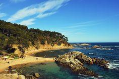 Cala Estreta http://ift.tt/1UtrnAm . #costabrava #redcostabrava #viaje #girona #emporda #catalunyaexperience #catalunyafotos  #bestplacestogo #mediterranean  #mediterraneo  #travel #traveling #picoftheday #fotodeldia #КостaБрава ..  info http://ift.tt/1EOM95f