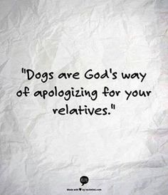"""LOL dog owner humor """"Dogs are God's way of apologizing for your relatives. Great Quotes, Funny Quotes, Inspirational Quotes, Yorkies, Pekingese, Pomeranians, I Love Dogs, Puppy Love, Nice Dogs"""