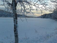 Immeljärvi lake, November 2015