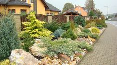 bylinková zahrada - Hledat Googlem