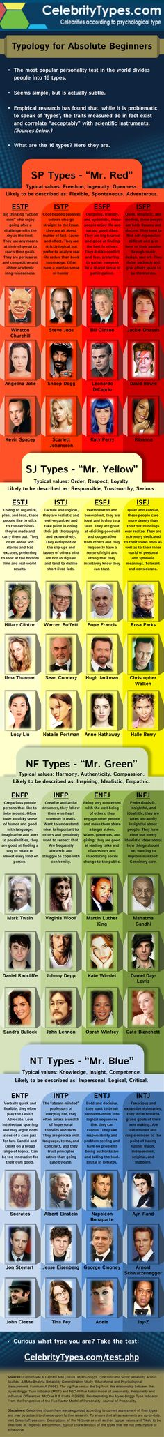 Celebrity Types Typology for Absolute Beginners infographic.