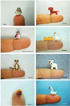 Viele kleine Tiere