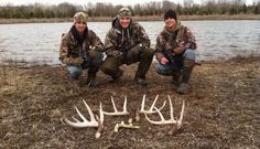 Just like hunting is hardly about killing an animal, shed hunting is hardly about finding an antler. It's about the adventure, the unknown, the camaraderie. Deer Hunting Tips, Elk Hunting, Archery Hunting, Bow Hunter, Shed Antlers, Girls Be Like, Adventure, Animals, Success