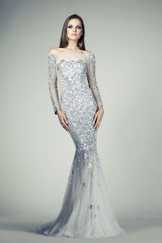 Tony Ward RTW SS14 I Style 65 I Mermaid cut Silver evening gown made of  Tulle ce056f71cbe4