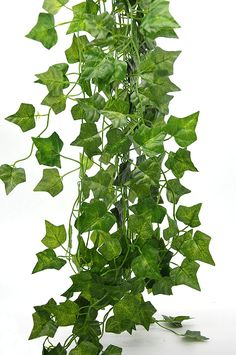 Bird Fiy® 78 Ft-12 English Ivy Silk Greenery Artificial Plants Wedding Party Dalloween Decorations >>> Details can be found by clicking on the image.