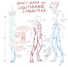 Digitigrade character