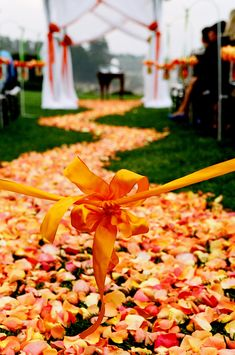 Orange rose petals mixed with fall leaves sprinkled down the wedding aisle - Autumn Wedding Ideas Wedding Aisles, Wedding Aisle Decorations, Orange Wedding Themes, Wedding Colors, Wedding Flowers, Orange Weddings, Wedding Orange, Rose Wedding, Sunset Wedding