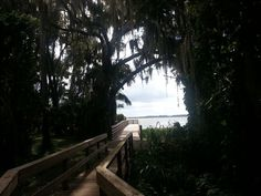 Boardwalk in Mount Dora, Florida Sunshine State, Central Florida, Strike A Pose, Running Away, Summertime, Things To Do, Wedding Planning, Park, Places