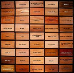 Wood Identification Chart