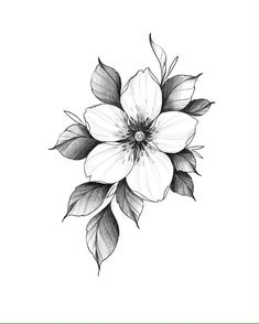 Tiny Bird Tattoos, Mini Tattoos, Black Tattoos, Small Tattoos, Men Flower Tattoo, Butterfly Back Tattoo, Flower Tattoo Drawings, Floral Tattoo Design, Tattoo Designs