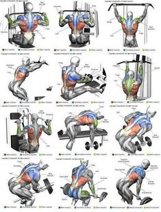 Shoulder Workout Routine To Add Serious Size To Your Shoulders. How To Get The Most Out Of This Shoulder Workout. Moving your muscle Best Chest Workout, Chest Workouts, Best Chest Exercises, Cable Back Exercises, Back Workouts For Men, Exercises For Lats, Back Weight Exercises, Home Gym Exercises, Workout Exercises