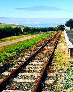 Perfect weekend for a bike ride along the #bellarinerailtrail  Bikes and maps available from reception!  #queenscliff #drysdale  Regram: @destinationbellarine by big4beaconresort http://ift.tt/1EBJopQ