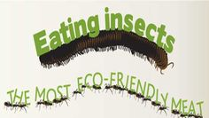 Put down that hamburger, pick up a cricket burger, and help reduce greenhouse gas emissions.