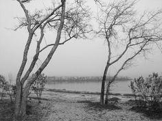 early morning, hazy, foggy, b/w Yorktown, VA
