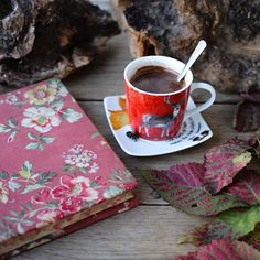 The perfect way to enjoy a cosy weekend is with a hot and delicious chocolate.......#winter#cosy#chocolate#forest#january#nature#naturelovers#atthetable#inspiremyinstagram#dearbellagrace#styleonthetable#theartofslowliving#momentsofmine#countrylife#countryliving#myeverydaymagic#thatsdarling#photooftheday#still_life_gallery#tv_fadingbeauty#gratitude