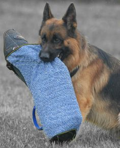 #Dog #bite #sleeve #cover made of #French #linen with handle $28.90 | www.all-about-german-shepherd-dog-breed.com