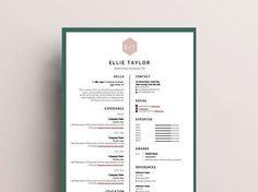 Cv Resume Sample Classy Modern Resume Template  Cover Letter  Reference Letter For Word .