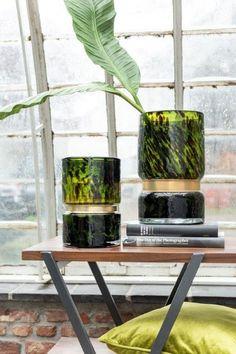 Glass Vase, Chic, Plants, Home Decor, Shabby Chic, Elegant, Decoration Home, Room Decor, Plant