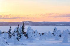 Winter Wonderland: Photos by Tiina Törmänen | Inspiration Grid | Design Inspiration