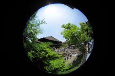 2012년 5월 19일 청수사(淸水寺)