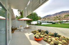 Palm Springs, California - midcentury - Patio - San Francisco - Bella Vita Garden Design