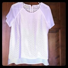 Calvin Klein blouse Size small. White, beautiful faux leather detailing with gold zipper in the back and sheer short sleeves. Brand new. Excellent condition. Calvin Klein Tops Blouses