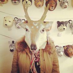 ace masks