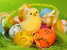 Cute Love Gif, Happy Easter, Easter Eggs, Easter Activities, Happy Easter Day